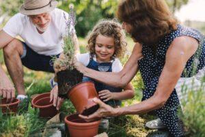 Grandparents and a Grandchild Planting